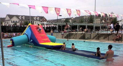 Dolphin Inflatable Swimming Pool Water Slide Rentals