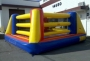 Bouncy_Boxing_4d7a4706a9e5b.jpg