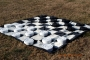 Giant_Checkers_4f15bfc279cc6.jpg