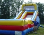 backyard slide with attendant