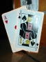 lighted playing cards jack-ace. - web
